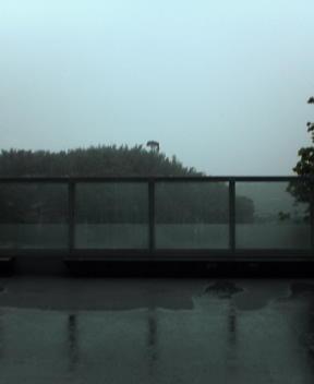 太宰府は雨。